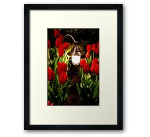 Through the tulip patch Framed Print