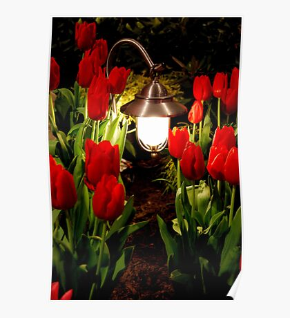 Through the tulip patch Poster