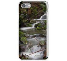 Silver Falls Creek iPhone Case/Skin