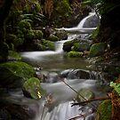 Silver Falls Creek by CezB
