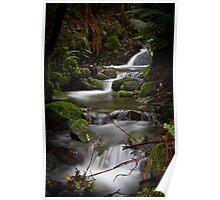Silver Falls Creek Poster
