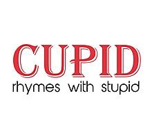 Cupid Rhymes with Stupid Photographic Print