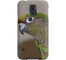 Maroon-Bellied Conure - iPhone Case - NZ Samsung Galaxy Case/Skin