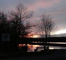 A Sunset in Winter  ... by wildmann59