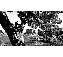 Memoir Photographic Print