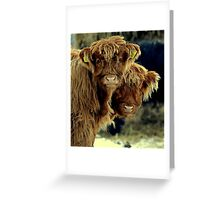A calf and a half Greeting Card