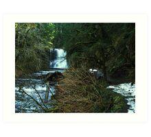 upper north falls Art Print