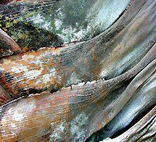 Tsunami by Kathie Nichols