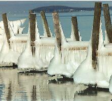 Ice Dancers by F.  Kevin  Wynkoop