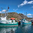 Boats in Harbour, Newfoundland, Canada by Gerda Grice