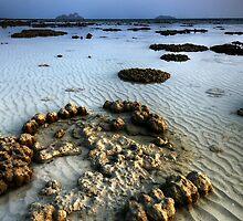 Reef Tide Two by Robert Mullner