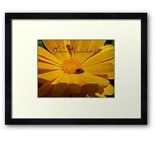 You're Appreciated - Ladybird - NZ Framed Print