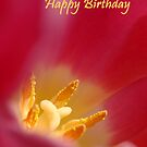 Tulip Birthday Card by Lorraine Deroon