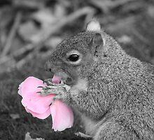 Squirrel eats Flower by Lord Lee Hemmings KtGC.OBE.