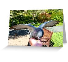 Great... A Hand Of Food!!!! - Pigeon - Dunedin Greeting Card