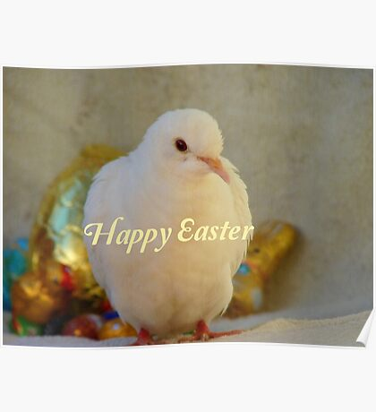 Easter Peace... - Happy Easter Dove - NZ Poster