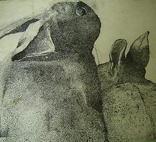 hare we go by margaretfraser