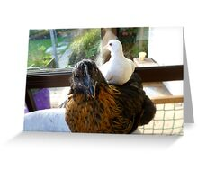 Who Said Dove's Can't Ride Side Saddle? - Dove & Chick - NZ Greeting Card