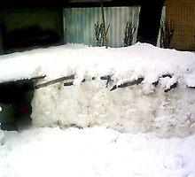 IGLOO SNOW HOUSE  by SofiaYoushi