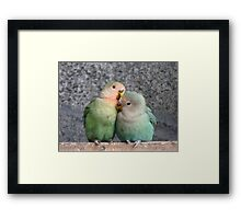 Excuse Me...This Is A Private Moment - Love Birds - NZ Framed Print