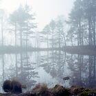 Ennerdale Mist by John Kiely