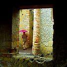 Escaping the rain, Herculaneum by Elaine Stevenson