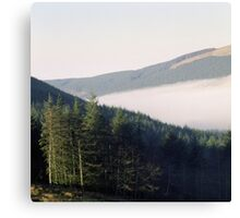 Lowther Park Canvas Print