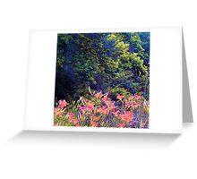 WV wildflowers Greeting Card