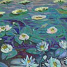 waterlilies by margaretfraser
