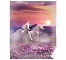 Duet of unicorns Poster