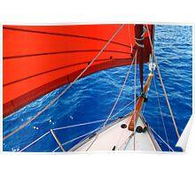 Caraway sails Poster