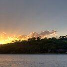 Kings Park Sunset by palmerphoto