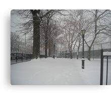 Brooklyn Snowstorm Metal Print
