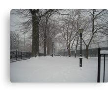 Brooklyn Snowstorm Canvas Print