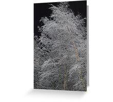 Snowy Weather  Greeting Card