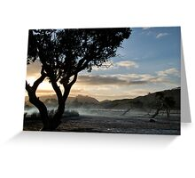 Sunset in Mangroves Greeting Card