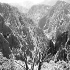 Black Cayon of Colorado by whisperofco