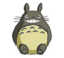 Totoro (shaded) Photographic Print