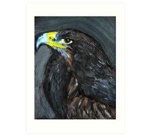 bird of prey portrait Art Print