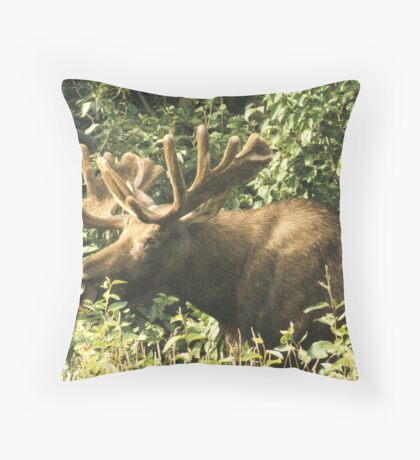 Full Bull Throw Pillow