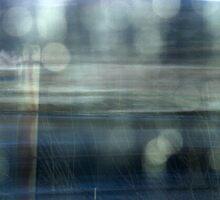 window by delfinada