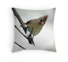 In a Snowstorm Throw Pillow