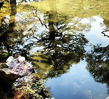 Reflections on Kyoto by Rob Price