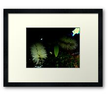 FIBRE OPTIC BOTTLE BRUSH Framed Print