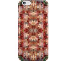 Abstract Mosaic in Red Rainbow iPhone Case/Skin