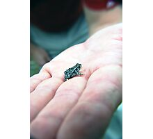 Little frog. Photographic Print