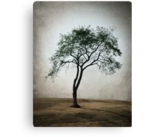 It Stands Alone Canvas Print