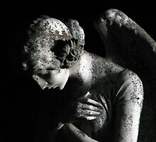 weeping angel by jarrodb