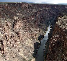 Rio Grande River by Nancy Richard