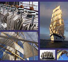 Ship Ahoy ! by Nancy Richard